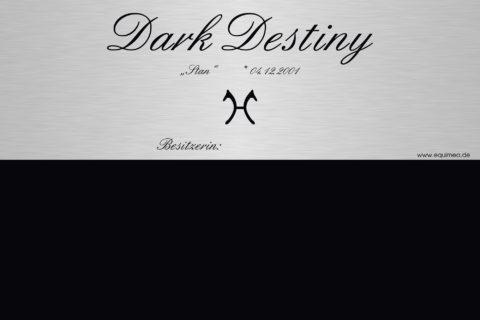 Entwurf-Dark-Destiny