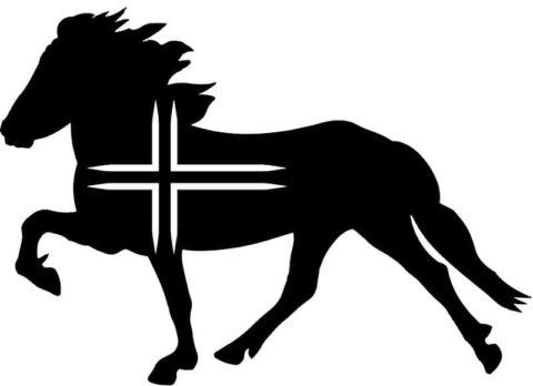 Aufkleber Isländer mit Flagge