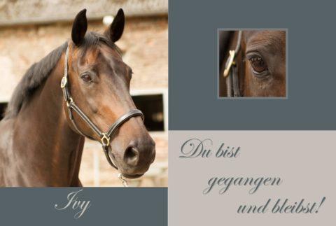 Gedenktafel Pferde
